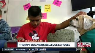 Pugsly the dog brings smiles to classroom