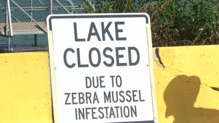City eyeing two options to treat Lake Cunningham